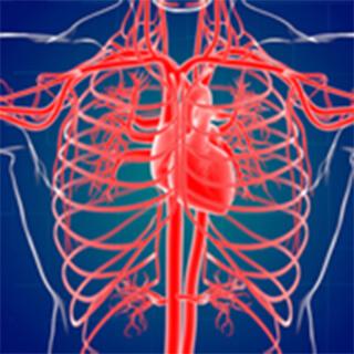 血管造影用関連製品